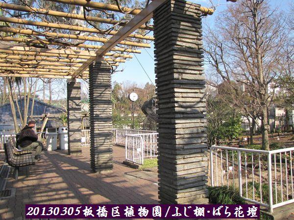 0305akatsuka05.jpg