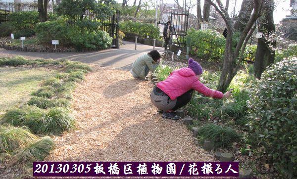 0305akatsuka06.jpg