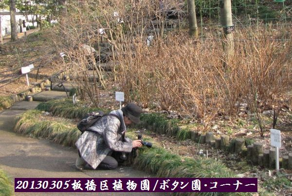 0305akatsuka10.jpg