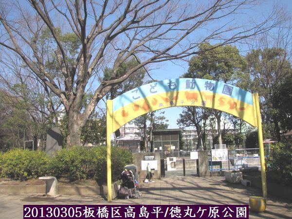 0305tokumaru04.jpg