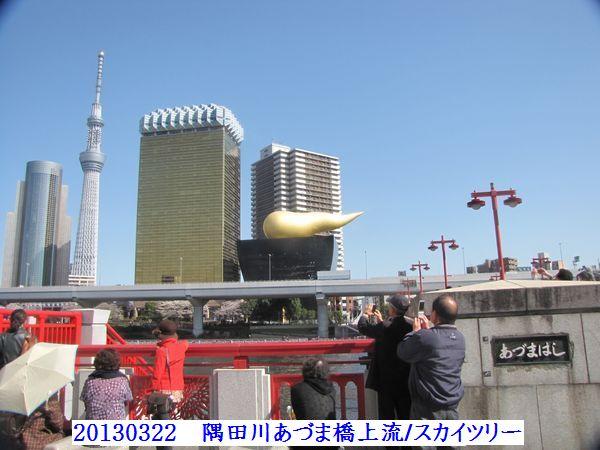 0322azuma07.jpg