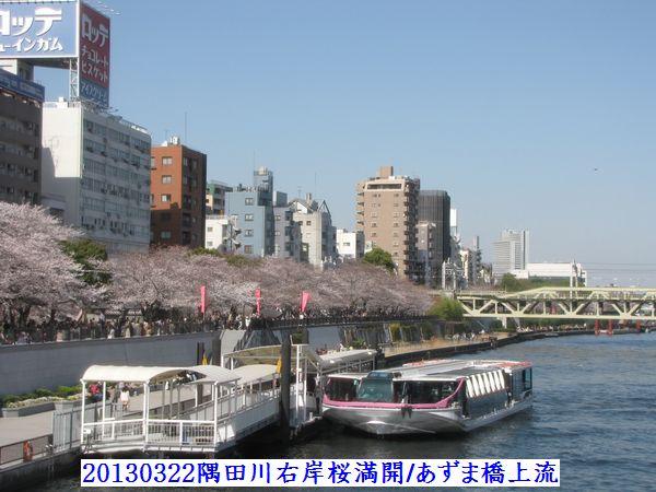 0322azuma08.jpg