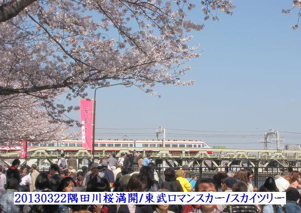 0322sumida10.jpg