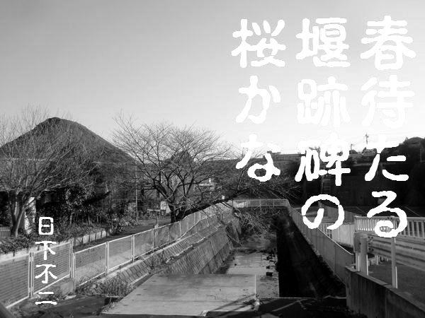 2013katahira003.jpg