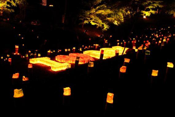 2011年11月15日清水の滝竹灯祭り (10)