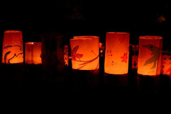 2011年11月15日清水の滝竹灯祭り (40)