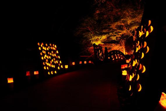 2011年11月15日清水の滝竹灯祭り (21)