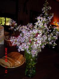 ママの飾った花