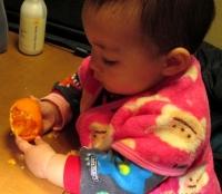 JJ13年12月13日ミカン食べ2