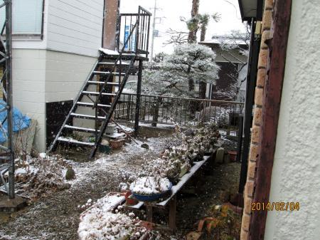 14年1月4日雪5
