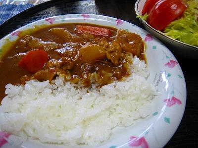 汐月流男料理 カレーライス