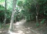sumaura19052.jpg