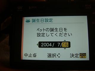 DSC05424.jpg