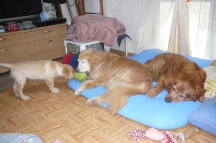 010_convert_20101021184419.jpg