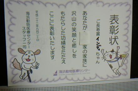 056_convert_20100921164850.jpg