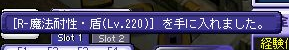 [R-魔法耐性・盾(Lv220)]を手に入れました。