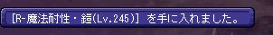 [R-魔法耐性・鎧(Lv.245)]を手に入れました。_1