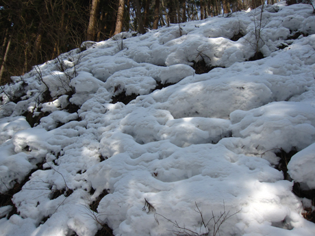 岩神 冬 5