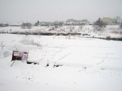 大館アメッコ市 雪像
