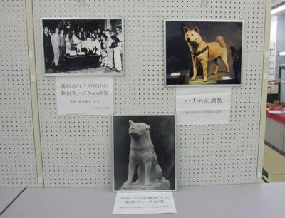 忠犬ハチ公写真展