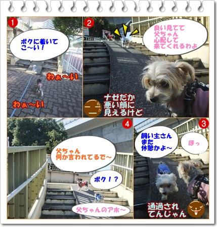 歩道橋foek