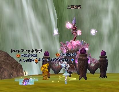 20091222(人面ペア)