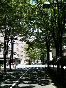 20100514-街の景色