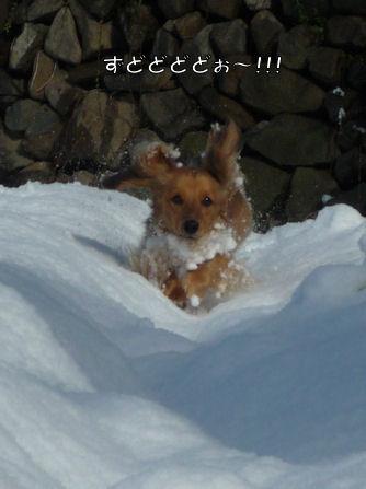 雪嫌い、返上! (旅行報告3)3