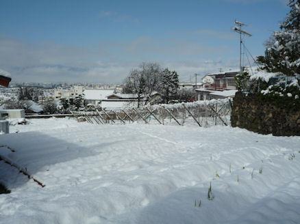 雪嫌い、返上! (旅行報告3)2