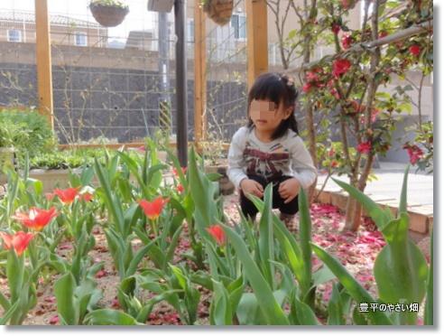022_20130316210114.jpg