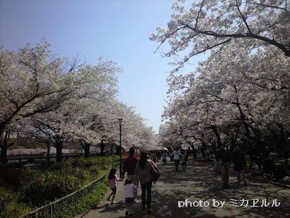 11.4.10大川CA391456[1]