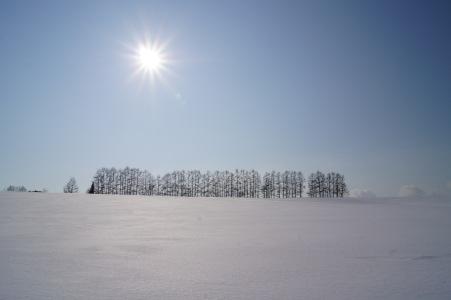 冬の富良野美瑛7