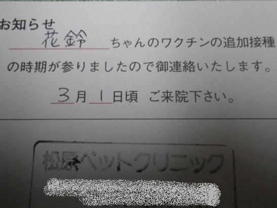 2013.2.18 ワクチンのお知らせ