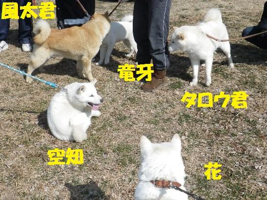 2013.3.3 番外編7・集合