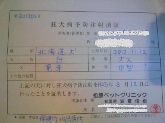 2013.3.12 狂犬病予防注射済票
