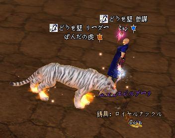 2010-01-18 19-43-09