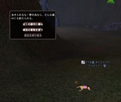 201004131120.jpg