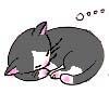 本当に寝てまったらあかんのやけど~ぷぷ