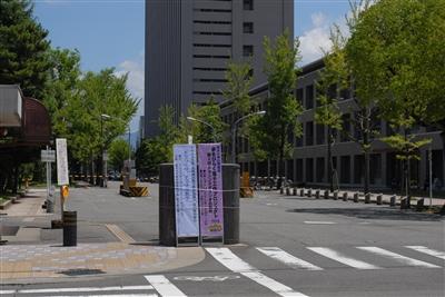 a20100724-SHO_0002.jpg