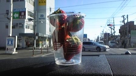 10 イチゴ