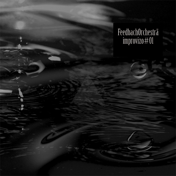 Feedback-Orchestra-jkt60060.jpg