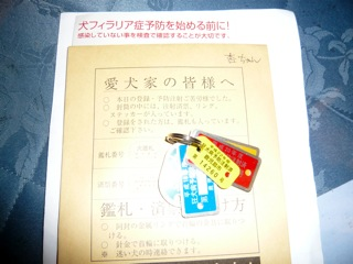 2010042705.jpg
