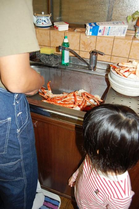 蟹いっぱいだ