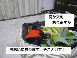 basyo1.jpg