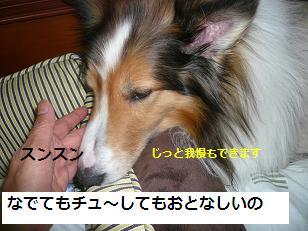 seinosuke3.jpg