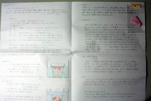 100311-2.jpg