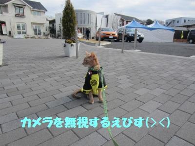 120205IMG_2007.jpg
