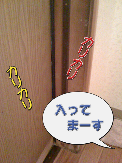01_20101006231234.jpg