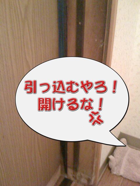 03_20101006231233.jpg