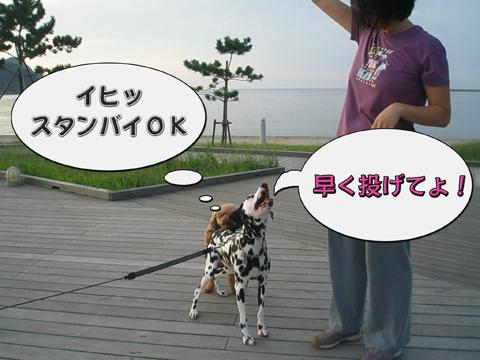04_20100918214323.jpg